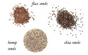 recipegeek-food_talk-spot_the_difference_hemp_chia_amp_flax_seeds_0-300x188